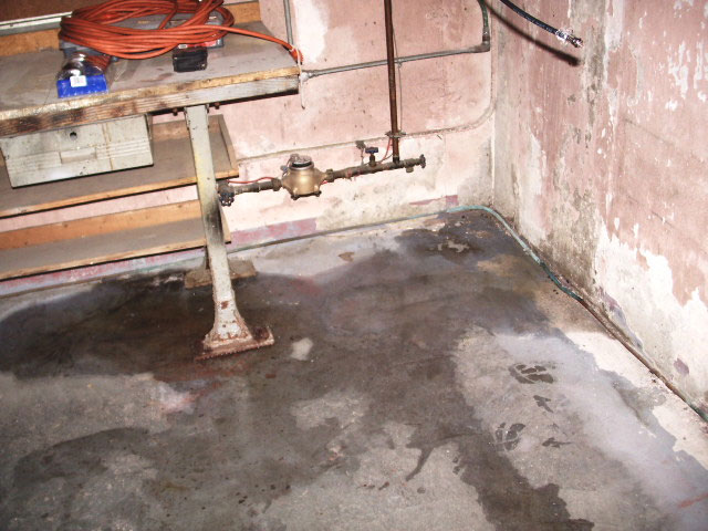 Basement Waterproofing Contractors Serving Ogden, Salt Lake City, Sandy And  Nearby